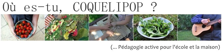 Où es-tu, COQUELIPOP ?